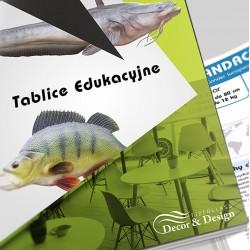 Tablice Edukacyjne - Ryby