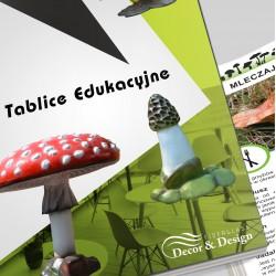 Tablice Edukacyjne - Grzyby