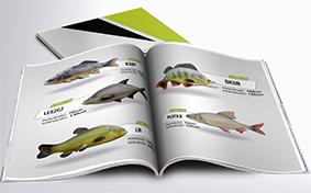 Katalog Makiety Reklamowe - inne