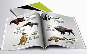Katalog Makiety Reklamowe - dzikie