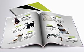 Katalog Makiety Reklamowe - Grzyby