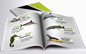 Katalog Makiety Reklamowe - morskie